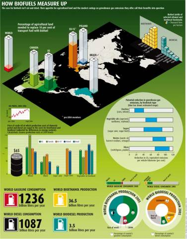 Biofuels Cause Global Warming