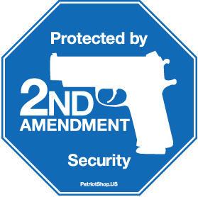 Guns and Democracy