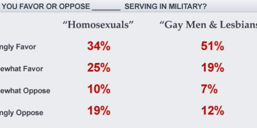 Gays and Lesbians Poll Better than Homosexuals