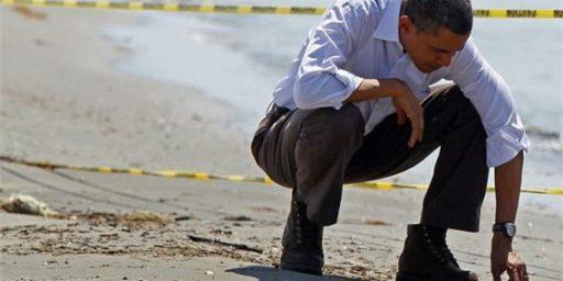 Obama Refused Dutch Oil Cleanup Help?