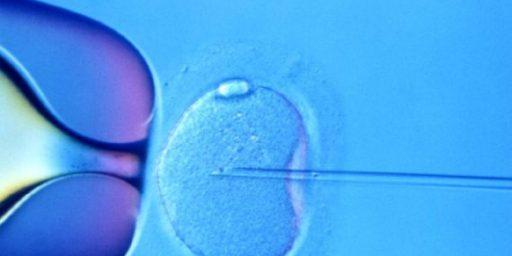 IVF Pioneer Wins Nobel Prize In Medicine