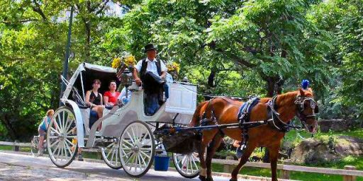 New NYC Mayor Wants To Ban Horse-Drawn Carriages