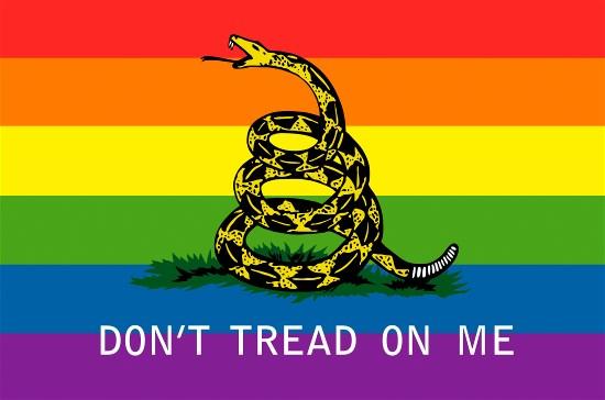 Dont Tread On Me Rainbow Flag