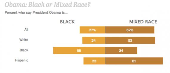 Pew Obama Race