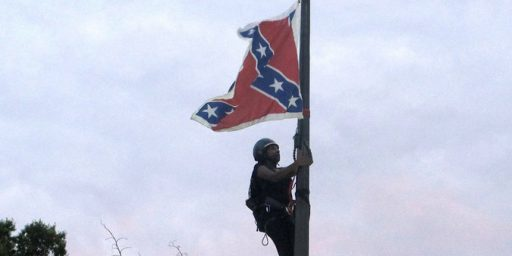 Protester Removes Confederate Flag At South Carolina Capitol