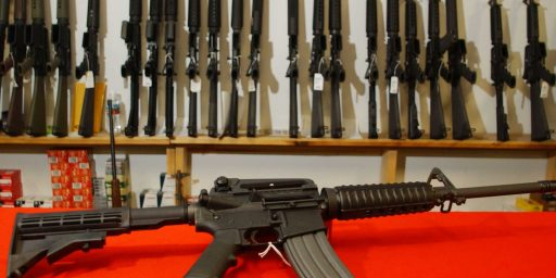 "Fourth Circuit Upholds Maryland's Ban On So-Called ""Assault Weapons"""