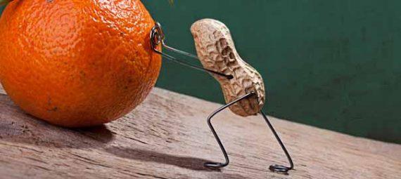 peanut-pushing-orange-up-hill-fatigue