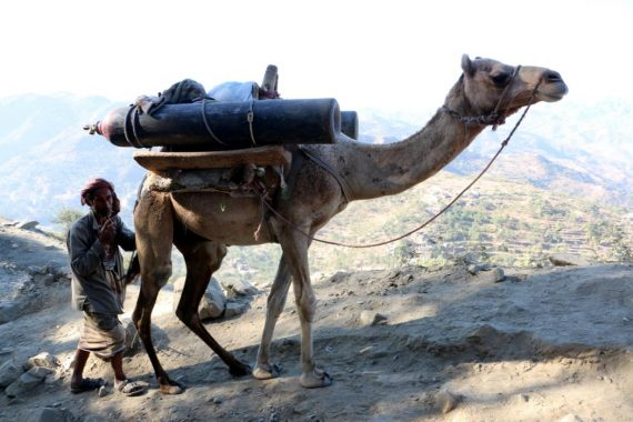 A Yemeni man uses a camel to transport oxygen cylinders on a mountainous road to the war-torn city of Taiz, Yemen, 01 January 2016. Ongoing nine-month conflict in Yemen has pushed the war-torn country to the brink of humanitarian disaster.  (Str/EPA)