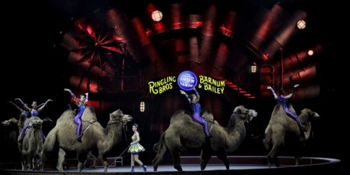 Ringling Brothers Circus To Shut Down After 146 Years In Business