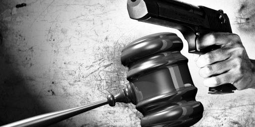 N.R.A. Sues Over New Florida Gun Law