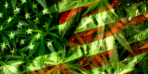 Marijuana Legalization Becoming Consensus Issue Among 2020 Democratic Candidates